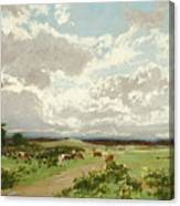 Near Liverpool. New South Wales Canvas Print