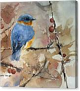 Near Spring Canvas Print