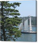 Nearing Burnt Coat Harbor Canvas Print