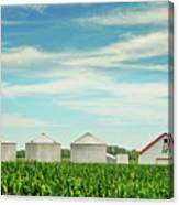 Nebraska Corn Canvas Print