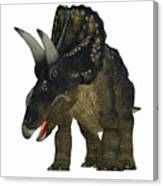 Nedoceratops On White Canvas Print