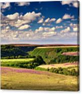 Needle Point From Saltersgate Canvas Print