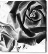 Negative Roses Canvas Print