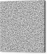 Negative Sponge Bone Confusion Canvas Print