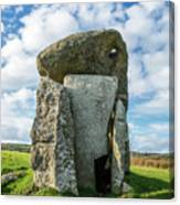 Neolithic Modern Canvas Print