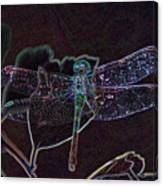Neon Dragon Fly Canvas Print