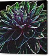 Neon Garden Dahlia I Canvas Print
