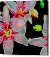 Neon Lilies Canvas Print
