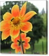 Neon Orange Flower Canvas Print
