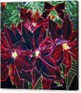 Neon Poinsettias Canvas Print
