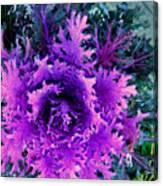Neon Purple Canvas Print