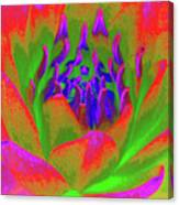 Neon Water Lily 02 - Photopower 3371 Canvas Print