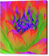 Neon Water Lily - Photopower 3370 Canvas Print
