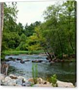 Neuse Falls Trail Canvas Print