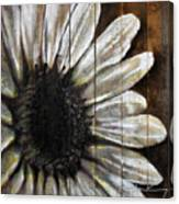 Neutral Sunflower Canvas Print