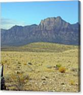 Nevada 2 Canvas Print