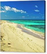 Neverending Paradise Canvas Print