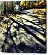 Neverending Path Canvas Print