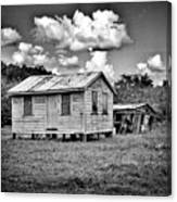 New And Old House Canvas Print