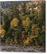 New Hampshire Color Along The Swift River Canvas Print