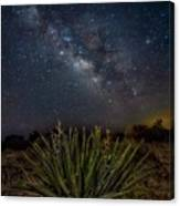 New Mexican Night Canvas Print