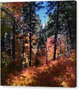 New Mexico Foliage Canvas Print