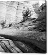 Kasha-katuwe Tent Rocks National Monument 4 Canvas Print