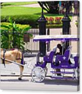 New Orleans Royal Carriage Canvas Print