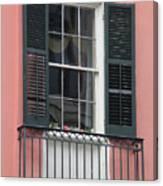 New Orleans Windows 4 Canvas Print