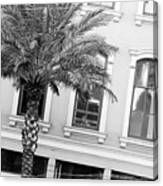 New Orleans Windows - Black And White Canvas Print