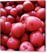 New Red Potatoes For Sale In A Market Canvas Print