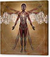 New Vitruvian Woman Canvas Print
