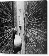 New York: Tenement, C1890 Canvas Print