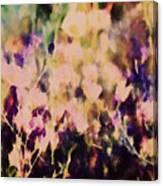 New York Wildflowers Xiii Canvas Print