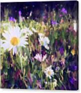 New York Wildflowers Xxv Canvas Print