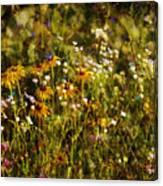 New York Wildflowers Xxvi Canvas Print