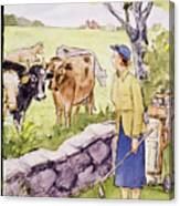 New Yorker June 11 1955 Canvas Print