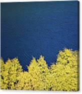 New Zealand Autumn Canvas Print
