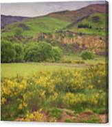 New Zealand Countryside Canvas Print