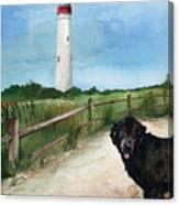 Newfy At Cape May Light  Canvas Print