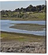 Newport Estuary Looking Across At Visitors Center  Canvas Print