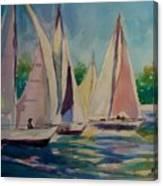 Newport Regatta  Canvas Print