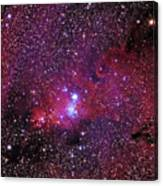 Ngc 2264 The Christmas Tree Cluster In Monoceros Canvas Print