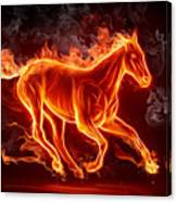 Nice Horse 3d Canvas Print