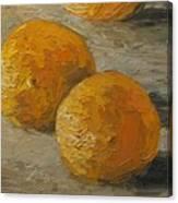 Nice Oranges Canvas Print