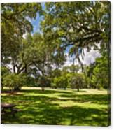 Nice Spot For Lunch Canvas Print