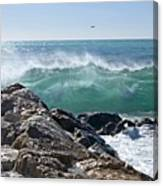 Nice Wave Canvas Print