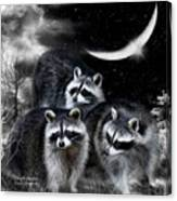 Night Bandits Canvas Print
