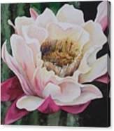 Night Cactus Canvas Print