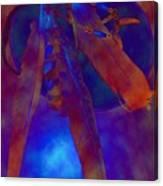 Night Feathers   -019 Canvas Print